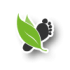 save-energy-icon